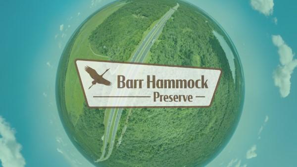 Barr Hammock